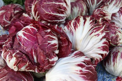 radicchio.jpg