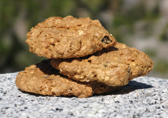 trail.cookies.JPG